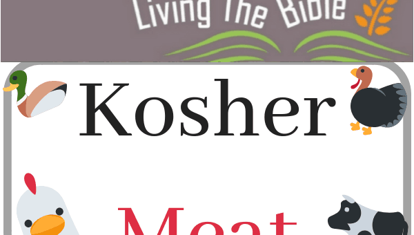 What is the significance of Kosher Meat?
